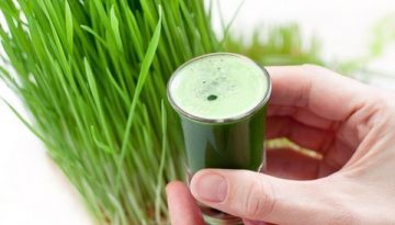 Wheatgrass for nutrition, detox and weight-loss!