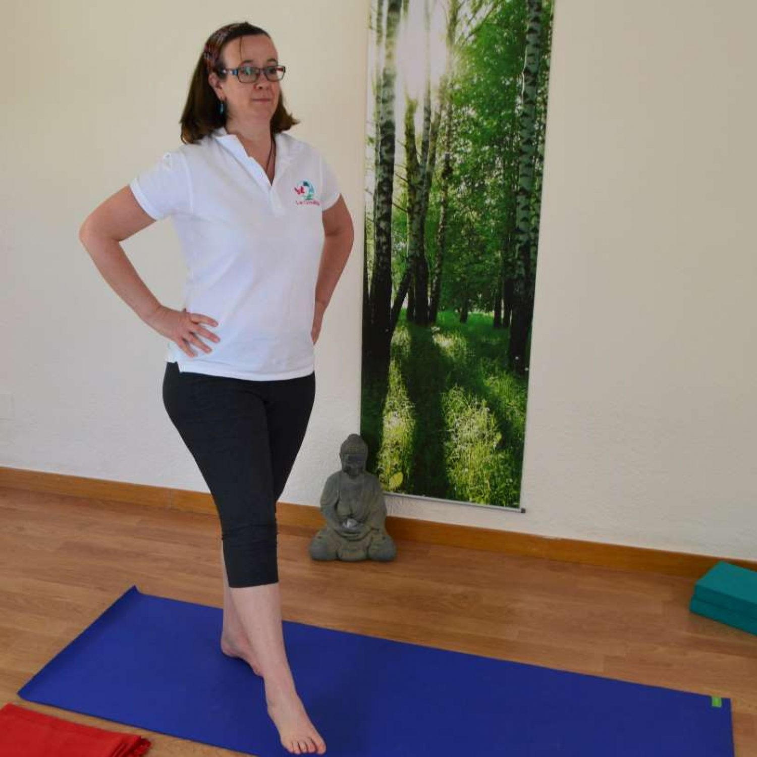 a-complete-30-minute-home-hatha-yoga-practice-for-the-whole-you