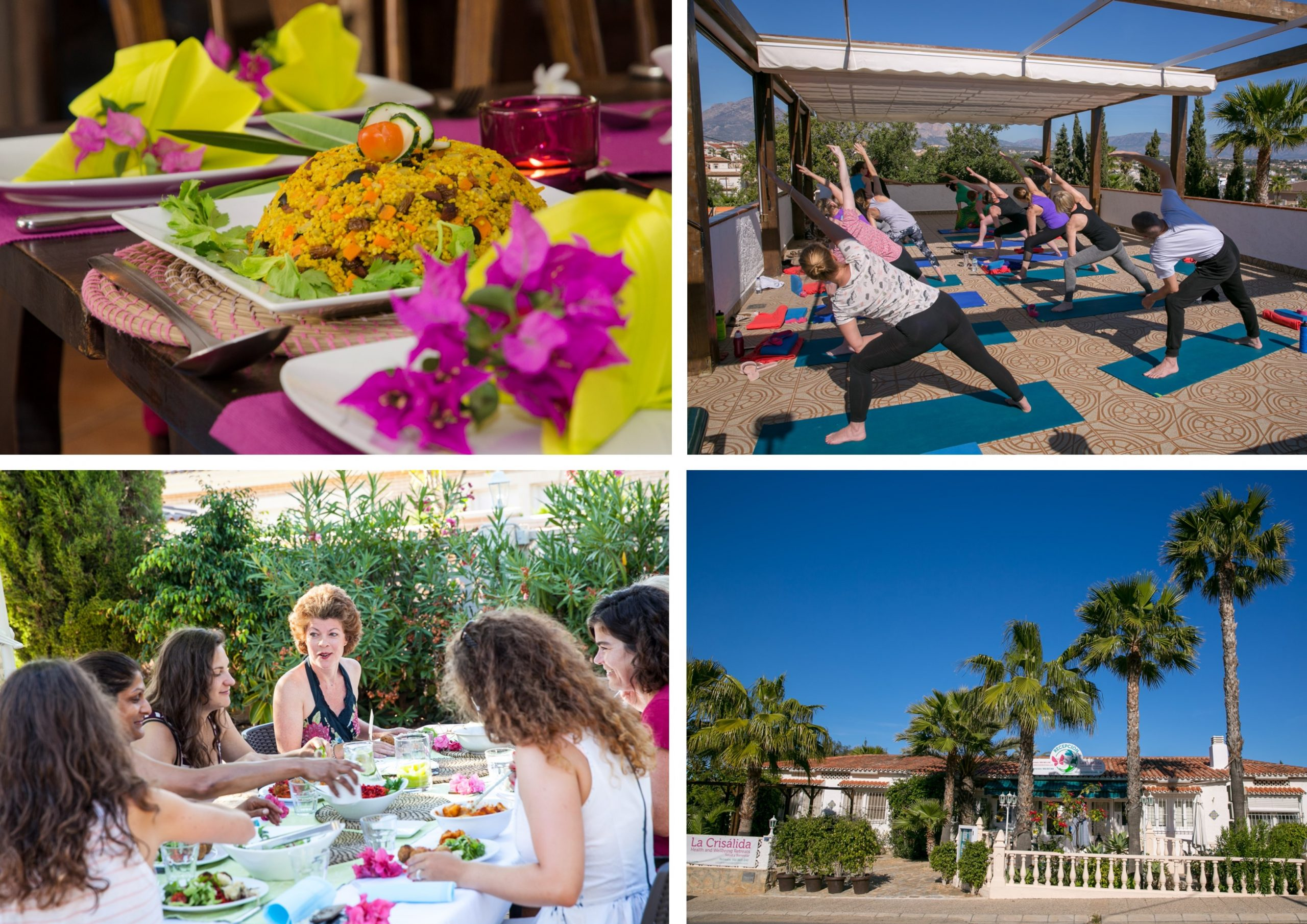 Healthy day retreat special offer autumn 2020