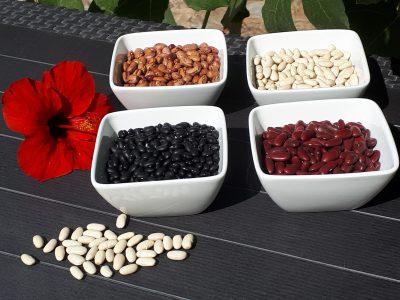 top ten plantbased bean recipes la crisalida detox retreat spain